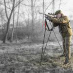 Bush stick Ph Jaeger Buissonnet (3)